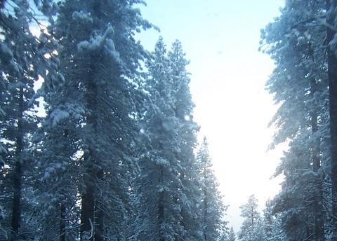 winterroad.jpg