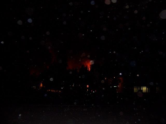 wildfire-020.jpg