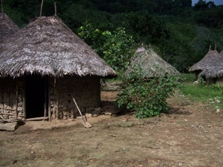 Koguivillage